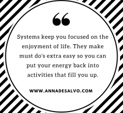 Systemsfocus